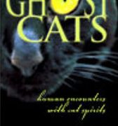 recommended reading ghost cats
