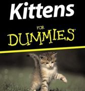 recommended reading kittens for dummies