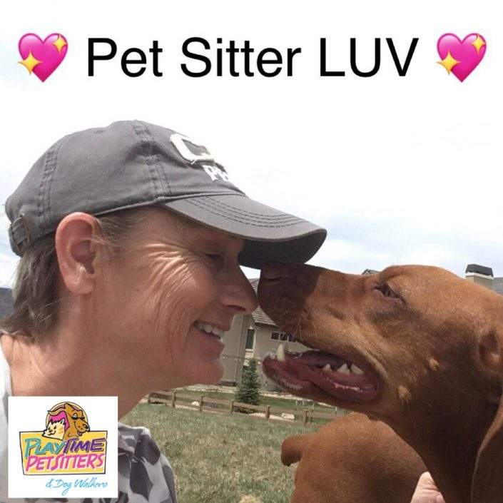 pet sitters colorado springs