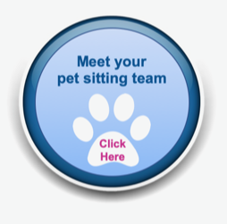 Pet Sitting and Dog Walking Colorado Springs